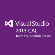 Microsoft Visual Studio Team Fndation Svr CAL 2013