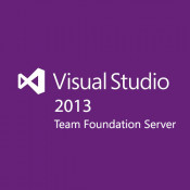 Microsoft Visual Studio Team Foundation Svr 2013