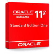 Oracle Database Standard Edition One Processor License