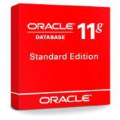 Oracle Database Standard Edition Processor License