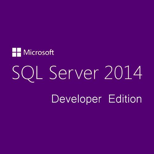 Microsoft SQL Server Developer Edition 2014