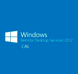 Microsoft Windows Remote Desktop Services CAL (Удаленное подключение)