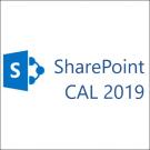 Microsoft SharePoint Server Standard CAL 2019