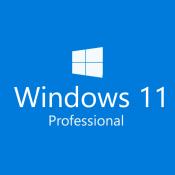 Windows 11 Professional