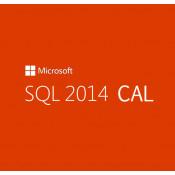 Microsoft SQL CAL 2014