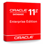 Oracle Database Enterprise Edition Processor License