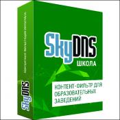 Веб-фильтр SkyDNS для Школ
