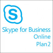 Skype for Business Online Plan 2